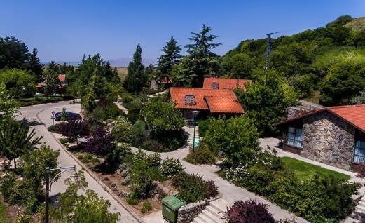 Merom Golan Tourism
